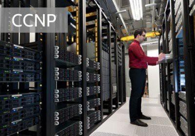 Network Professional